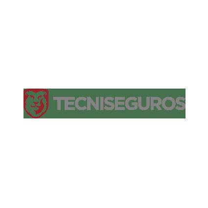 Tecniseguros – Ecuador
